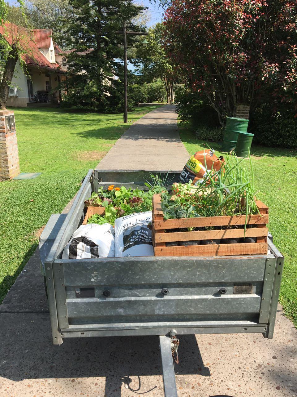 Mantenimiento de jard n vertical cultivarte - Mantenimiento de jardines ...