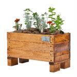 COMBO | sustrato, plantines e instalación virtual