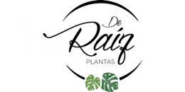 De Raíz plantas